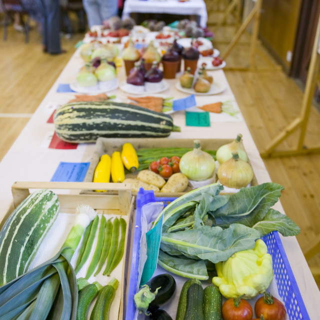 """Vegetable stall at the summer fete in Weybourne Norfolk UK"" stock image"