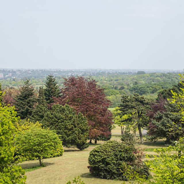 """""""Sandwell valley country park"""" stock image"""