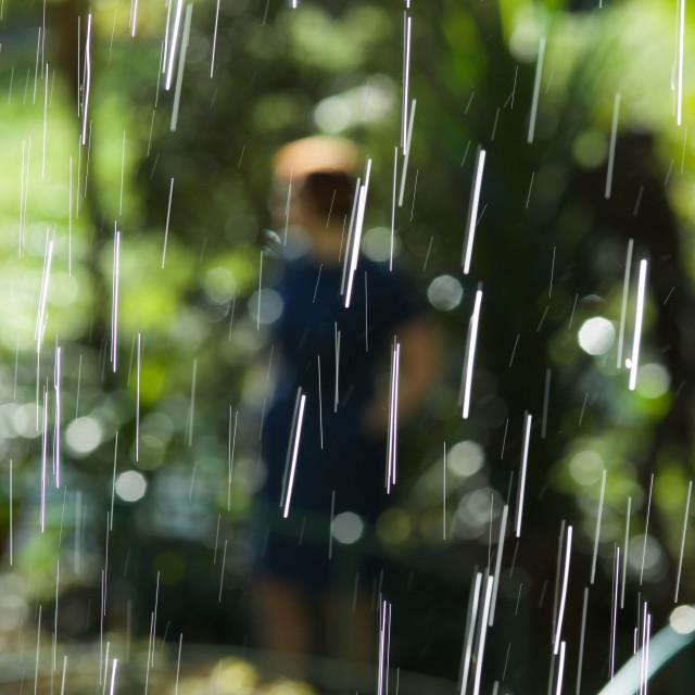 """Through the Rain"" stock image"