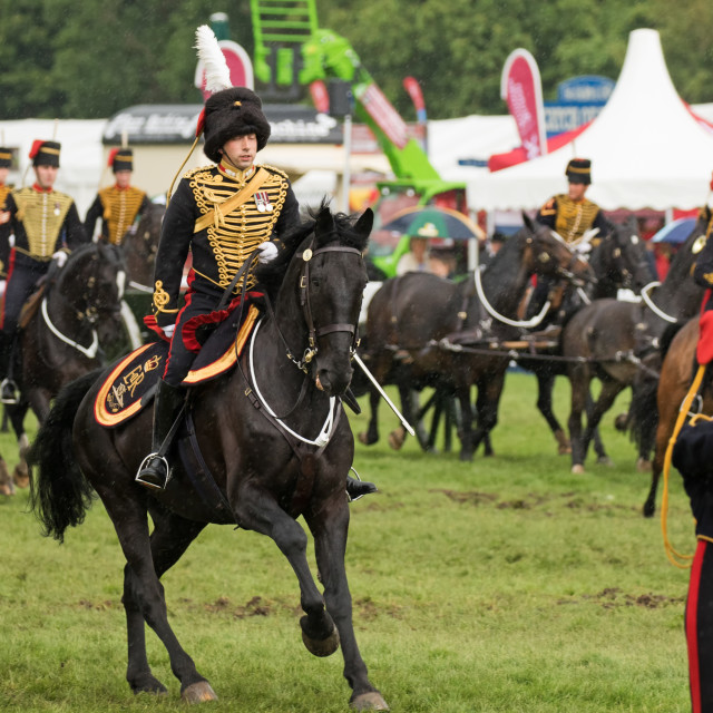 """The King's Troop, Royal Horse Artillery, mounted officer"" stock image"