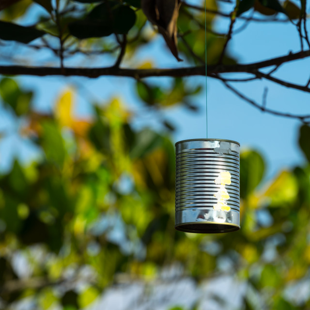 """""""Used tin can hang on the tree to scare birds"""" stock image"""