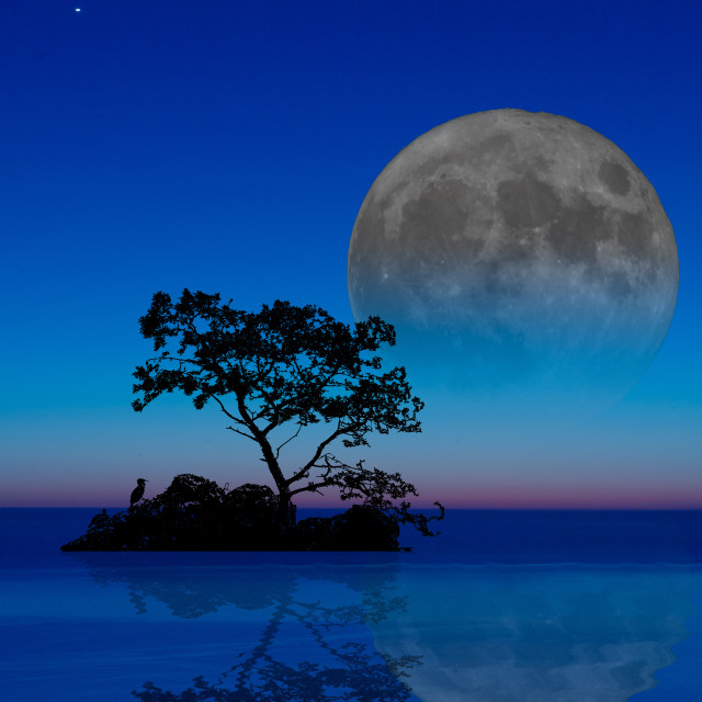 """Magical moon"" stock image"