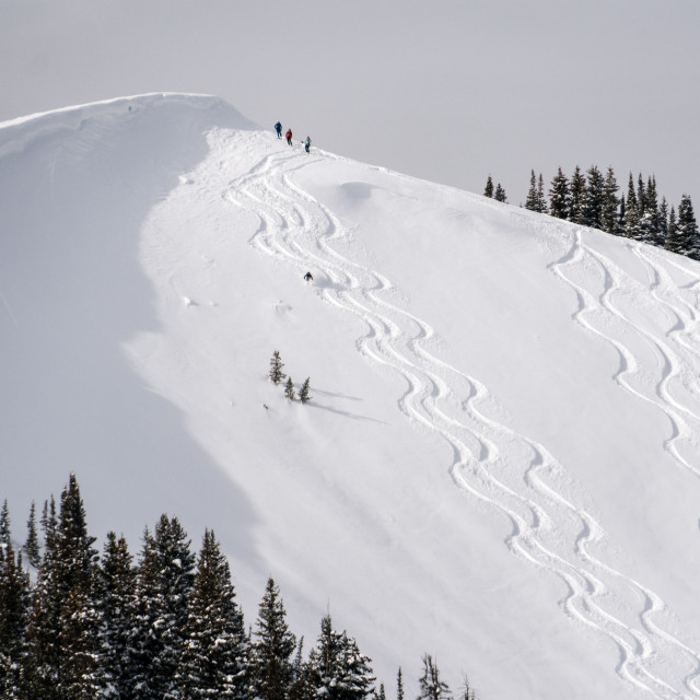 """powder tracks"" stock image"