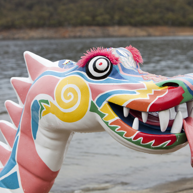 """A dragon boat at Jindabyne in the Snowy mountains, Australia, as part of a..."" stock image"