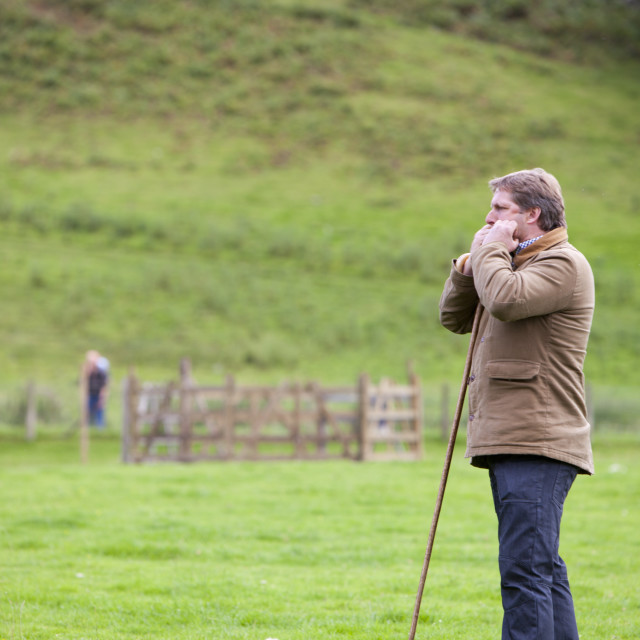 """""""A shepherd working his dog and sheep at the Vale of Rydal Sheepdog Trials,..."""" stock image"""