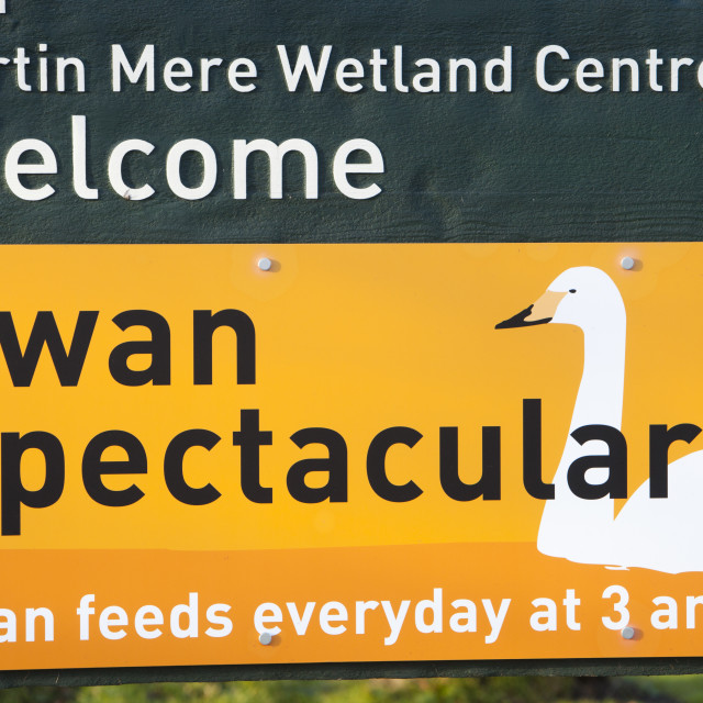 """Martin Mere bird reserve near Ormskirk, Lancashire, UK."" stock image"
