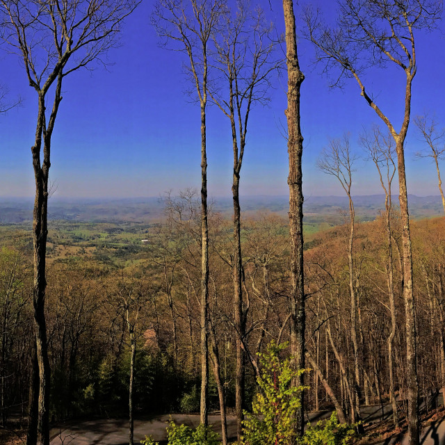 """Southern Panorama"" stock image"