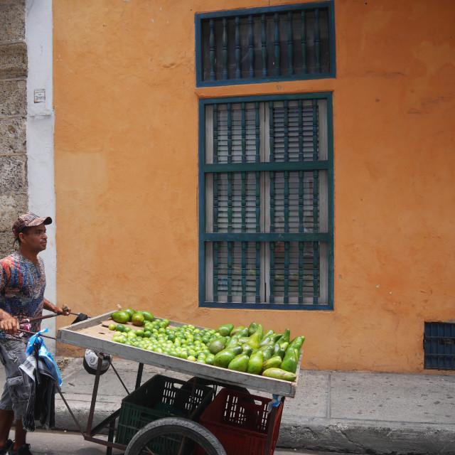 """""""Fruit Seller"""" stock image"""