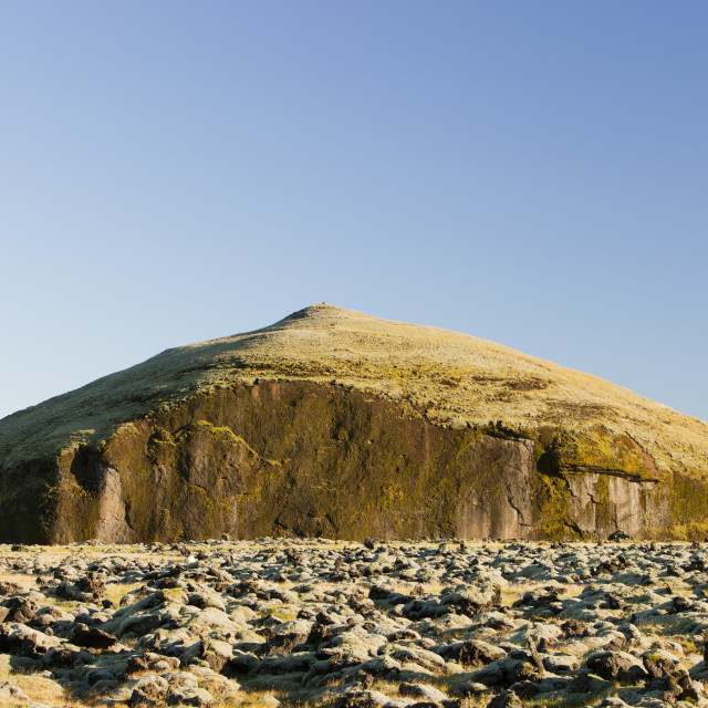 """""""Moss covered lava flow in the Skaftafell National Partk, Iceland."""" stock image"""