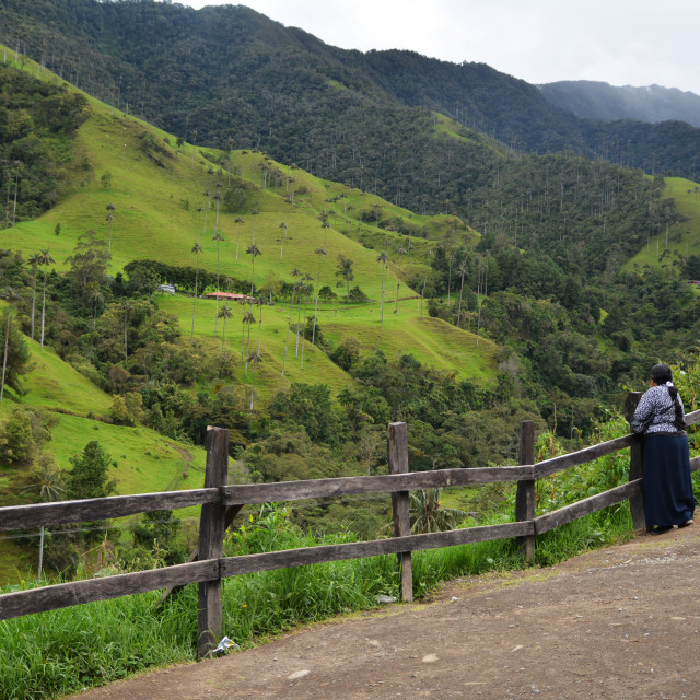 """Cocora valley people"" stock image"