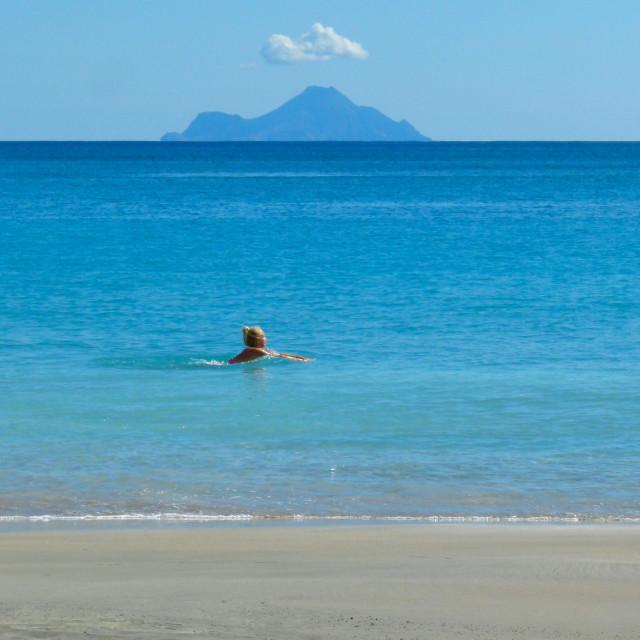 """Caribbean swim"" stock image"