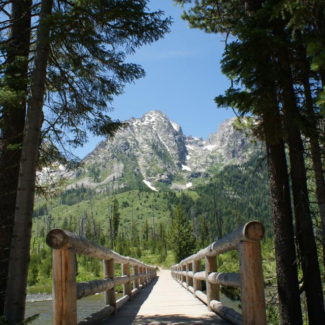 """""""Bridge to the Mountain"""" stock image"""