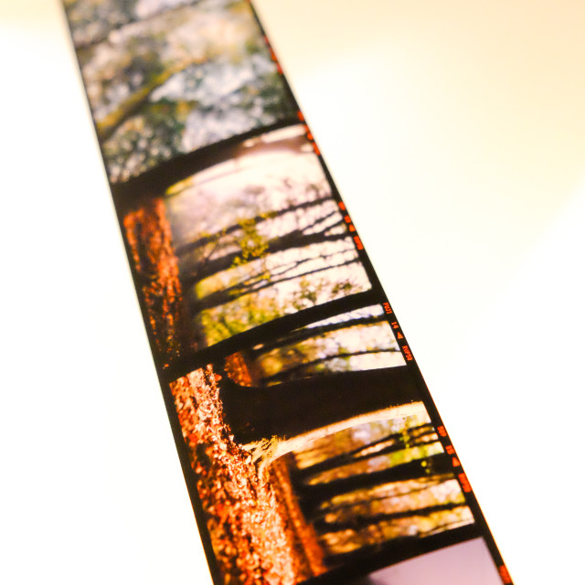 """Photographic film drying"" stock image"