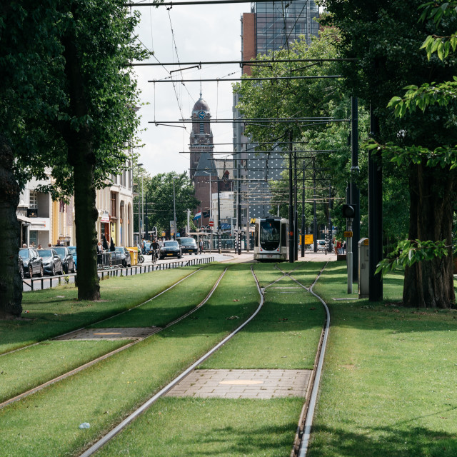 """Tram tracks in a park in Rotterdam."" stock image"