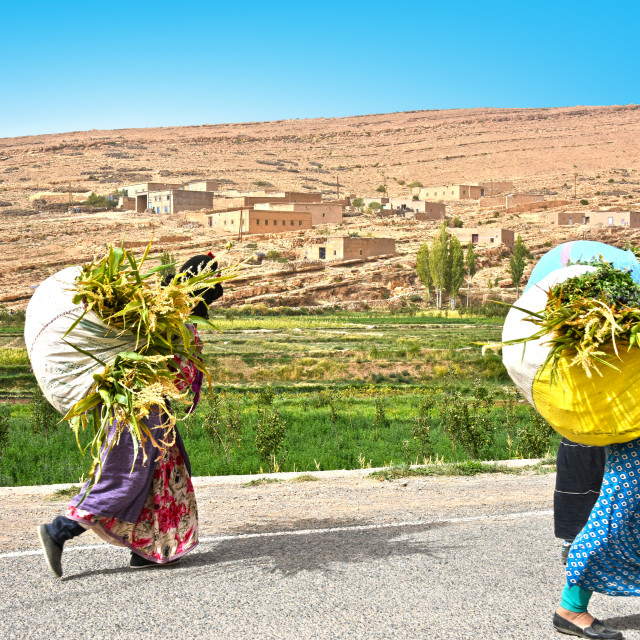"""""""Village women carrying crops in High Atlas Mountains"""" stock image"""