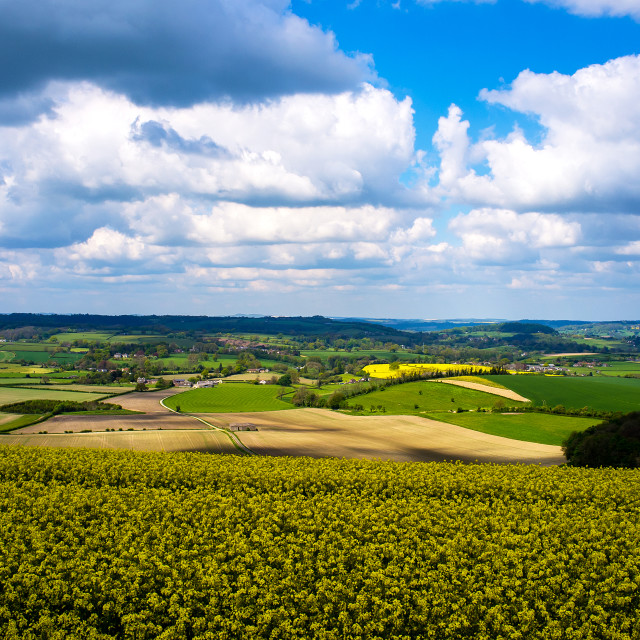 """Where Dorset meets Wiltshire"" stock image"