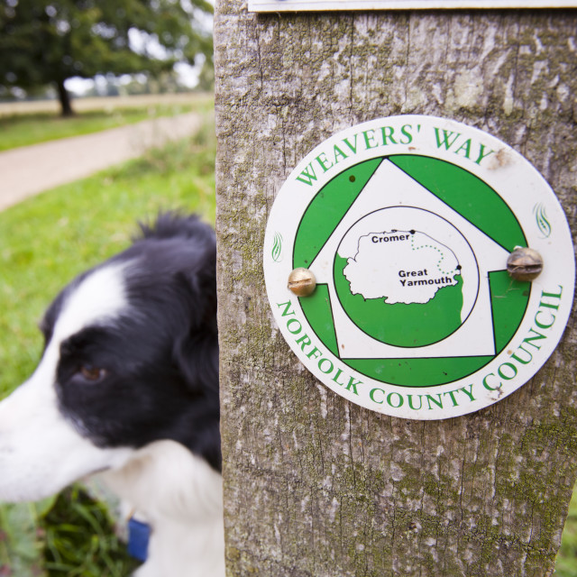"""A sign for the Weavers Way long distance footpath in Norfolk, UK."" stock image"