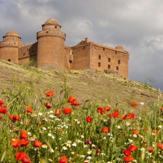"""La Calahorra Castle in La Calahorra at the foot of the Sierra Nevada..."" stock image"