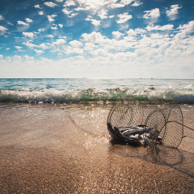 """Fishing net coop trap , a floating basket for keeping live fish"" stock image"