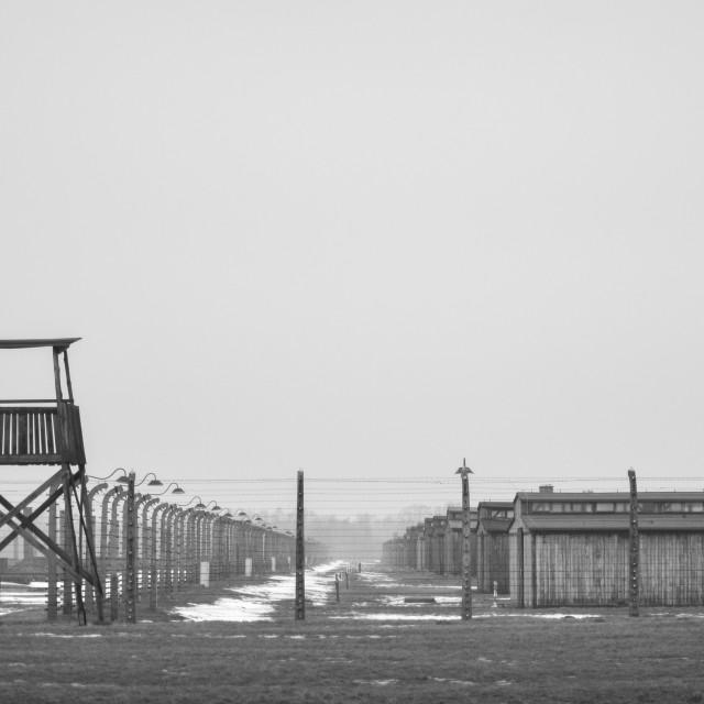"""Auschwitz"" stock image"
