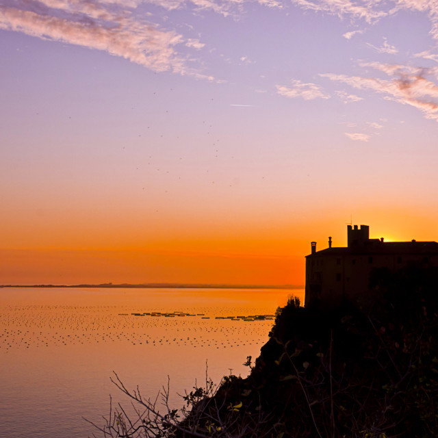 """""""Duino castle at sunset"""" stock image"""