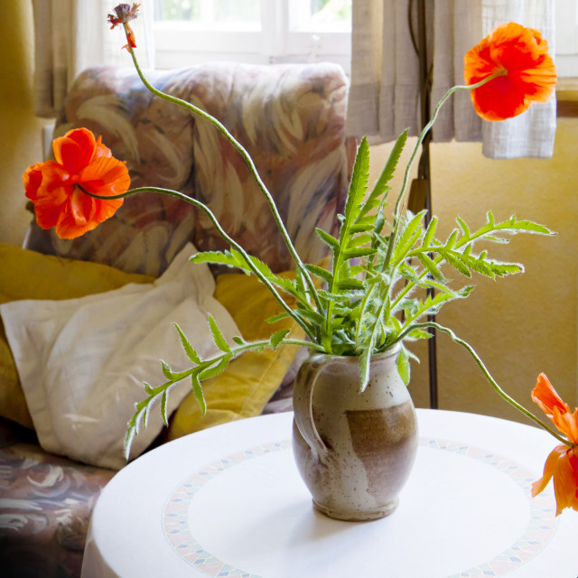 """""""still life, red poppy flowers in vase on round table"""" stock image"""