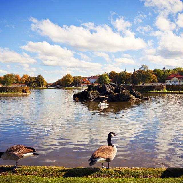 """Nymphenburg Castle near Munich: ornamental pond"" stock image"