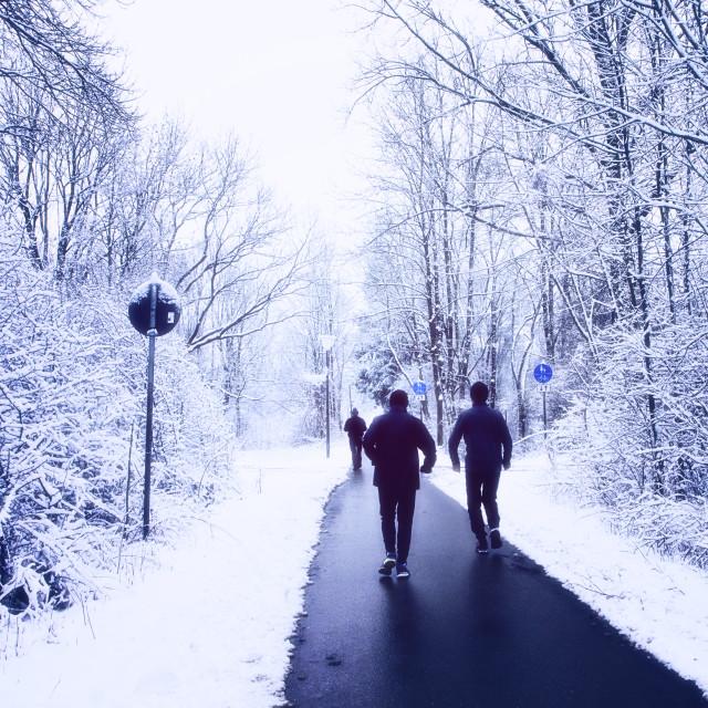 """Joggers run on path among wood in wintertime"" stock image"