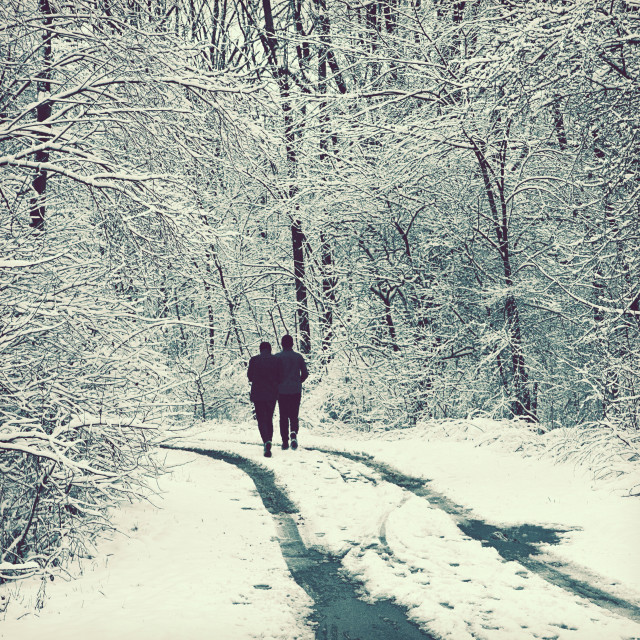 """""""Couple go for a walk among trees covered by snow"""" stock image"""