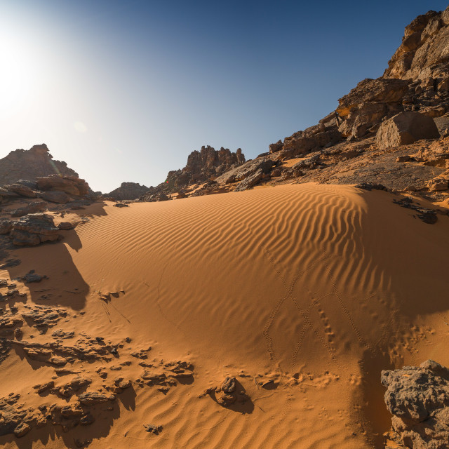 """The nature of sahara"" stock image"