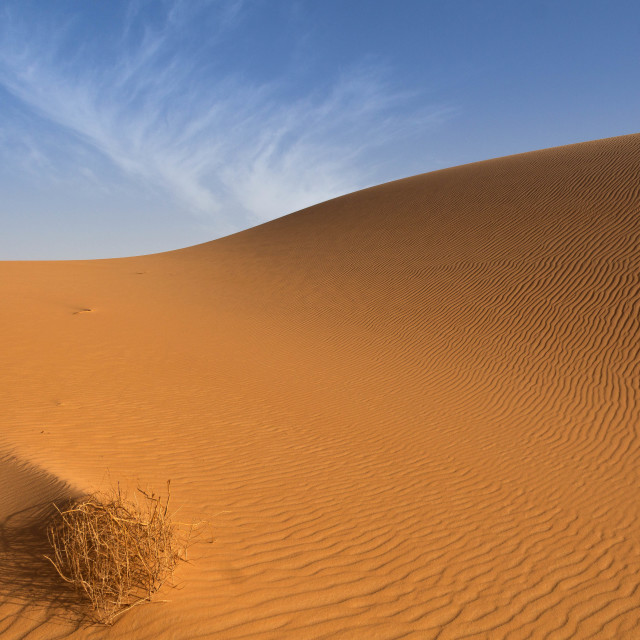 """The Golden Sand"" stock image"
