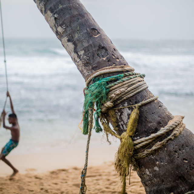 """Colourful Beach Rope swing near Galle in Sri Lanka"" stock image"