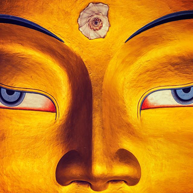 """Maitreya Buddha face close up, Thiksey Gompa, Ladakh"" stock image"