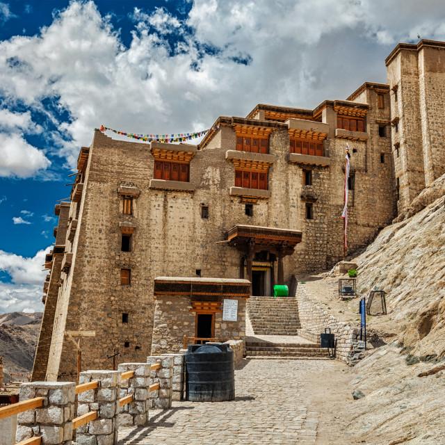 """""""Leh palace, Ladakh, India"""" stock image"""