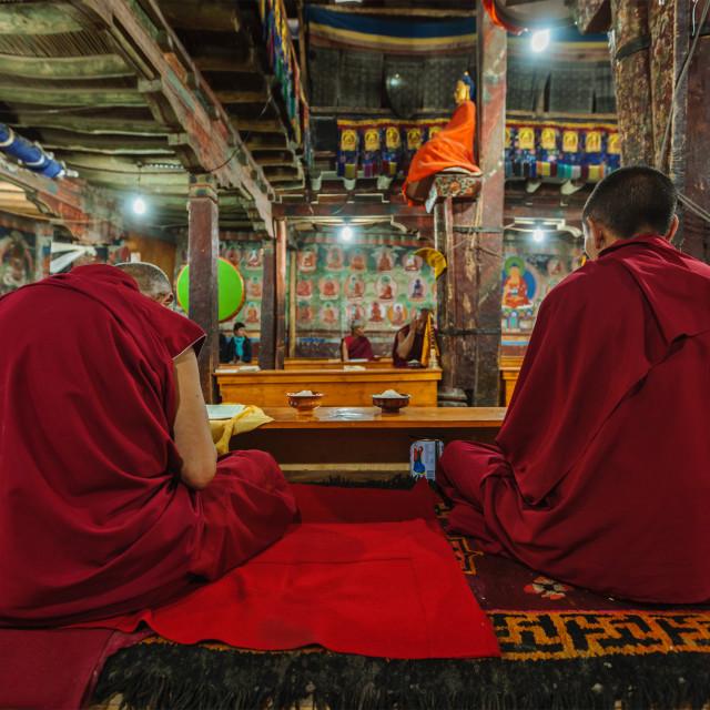 """THIKSEY, INDIA - SEPTEMBER 4, 2011:Tibetan Buddhist monks during prayer in..."" stock image"
