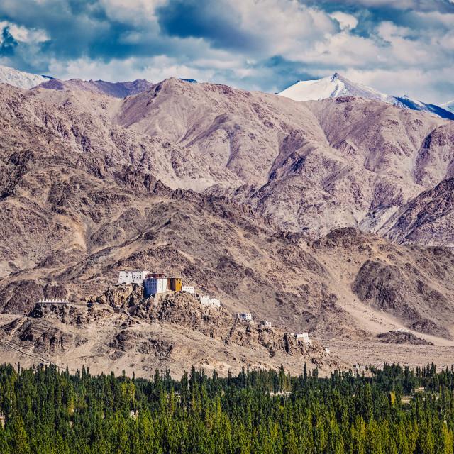 """""""Thiksey monastery. Ladakh, India"""" stock image"""