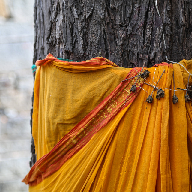 """Tree with holy material decoration 