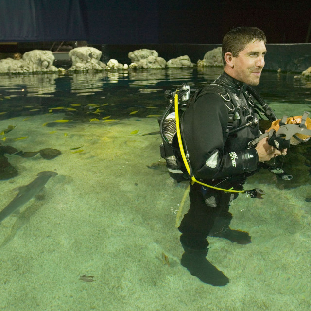 """""""A scuba diver in The Deep Europes deepest aquarium in Hull UK"""" stock image"""