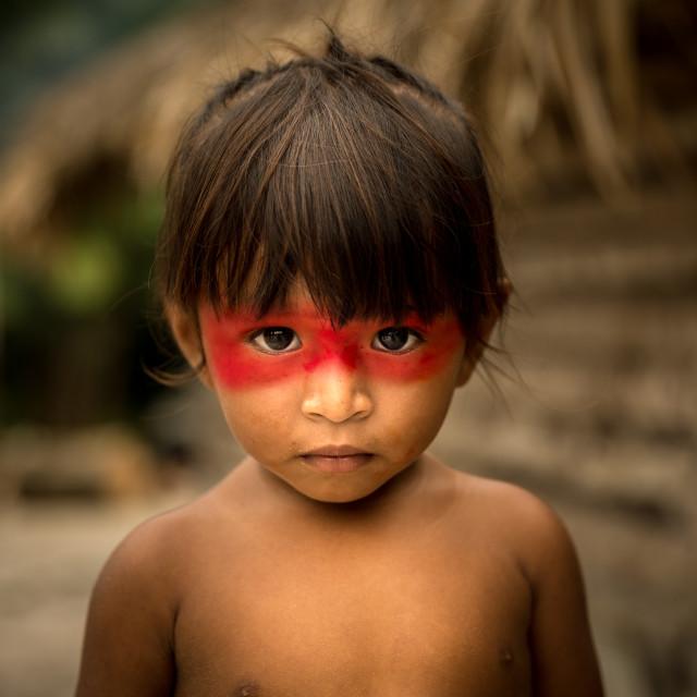 """""""Native Brazilian Child from Tupi Guarani Tribe, Brazil"""" stock image"""