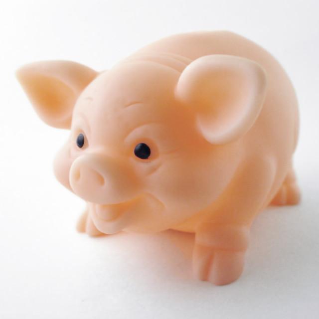 """Little Piggy"" stock image"