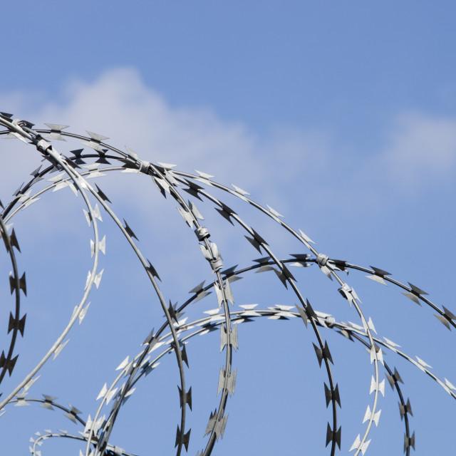 """""""Razor wire"""" stock image"""