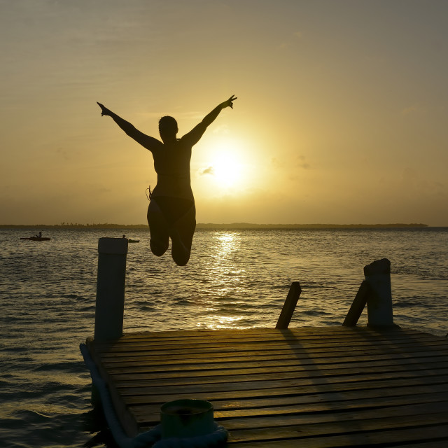 """Leap into the sunset"" stock image"
