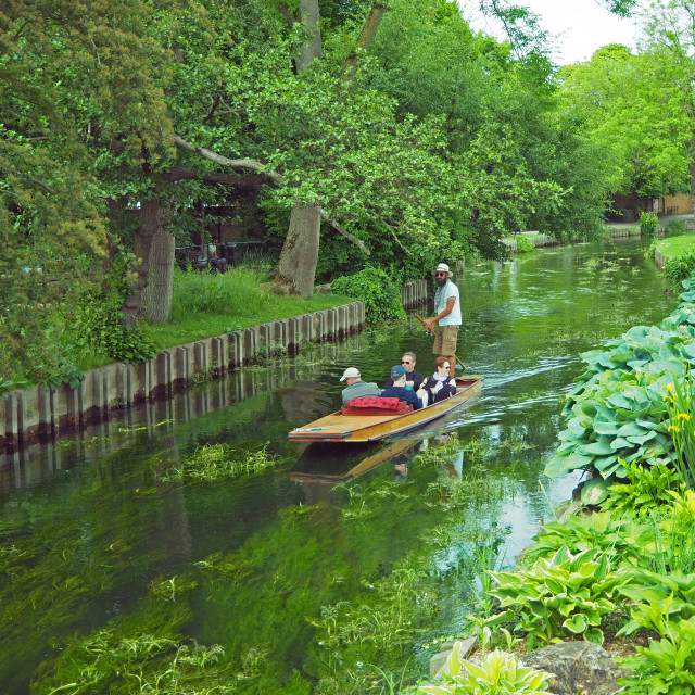 """Punting on the River Stour."" stock image"