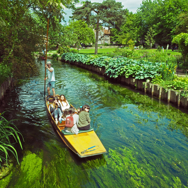 """Punting on the River Stour"" stock image"