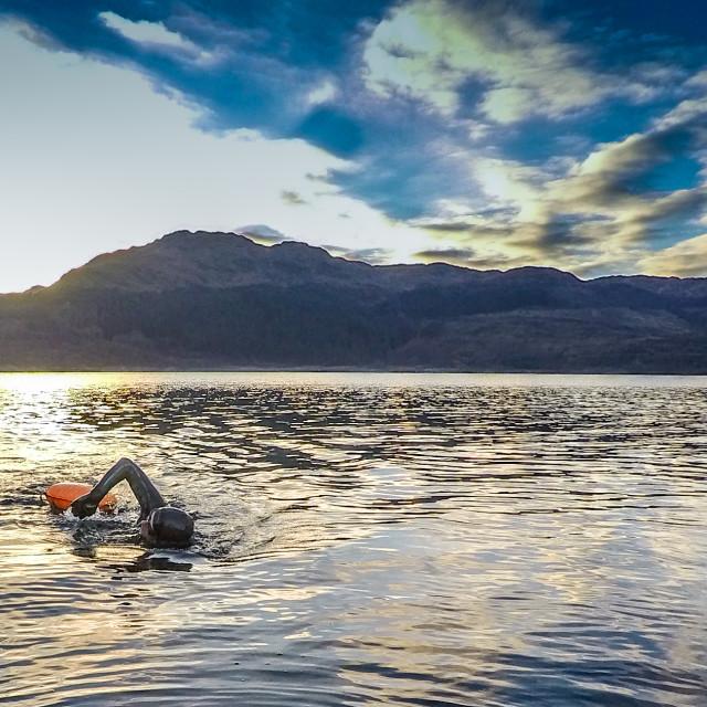 """swim wild scottish highlands"" stock image"