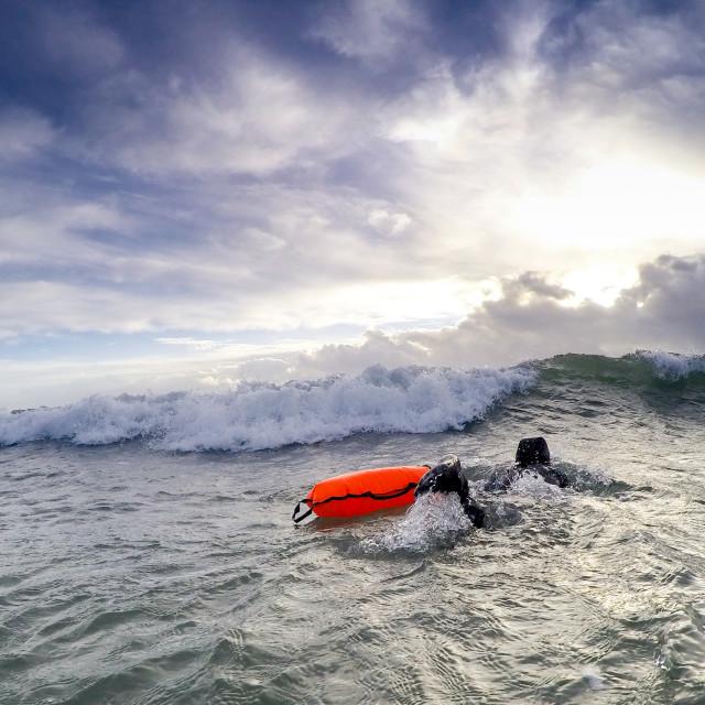 """swim wild wave"" stock image"
