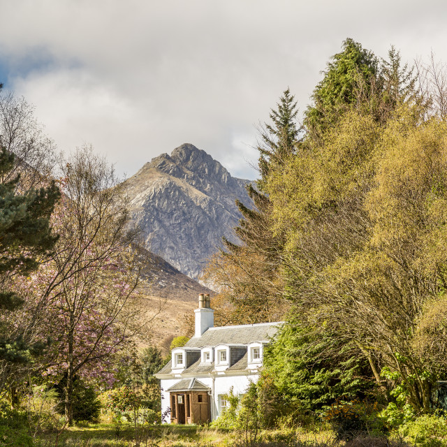 """""""A country cottage"""" stock image"""