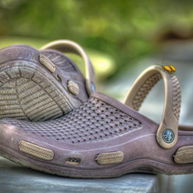"""sandal"" stock image"