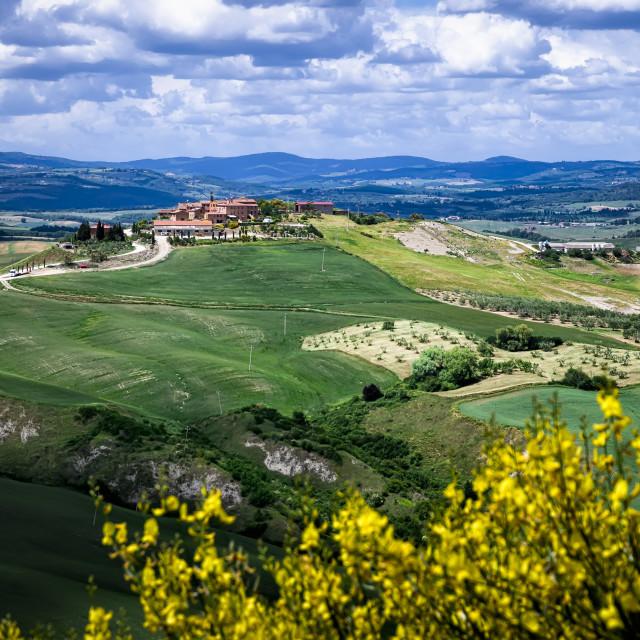 """Hills of Tuscany"" stock image"