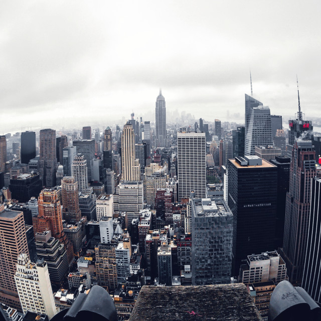 """Concrete jungle"" stock image"